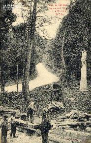 Forêt de VERNON