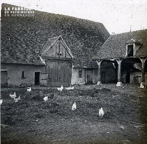 B013 Les poules dans la cour de la ferme (voir B009)