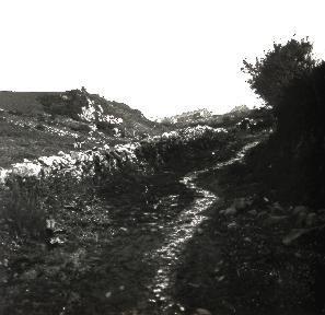 B014 La Hague Le chemin creux