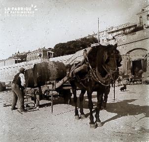 B020 Quotidien cheval devant l'hotel d'orléans