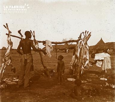 B023 Afrique scène de la vie quotidienne chèvres mortes
