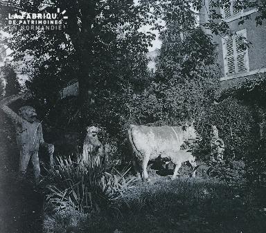 B024 Statues singe, fauve, vache dans un jardin