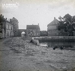 B031 Mare et canards à l'intérieur d'un village