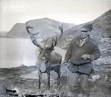 B033  Norvège un élan et un homme