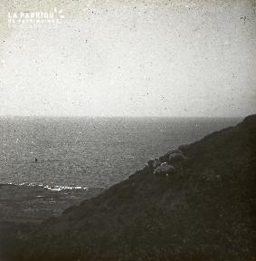B034 Paysage côtier9