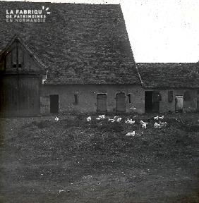 B036 La Hague cour d'une ferme avec poules cf B009