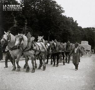 Attelage de huit chevaux transportant des blocs de pierre