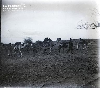 B061 Mauritanie La caravane 2