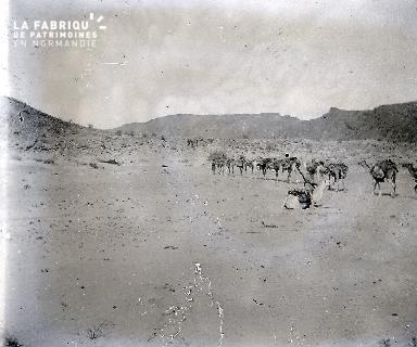 B061 Mauritanie La caravane 3