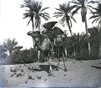 B063 Mauritanie 4