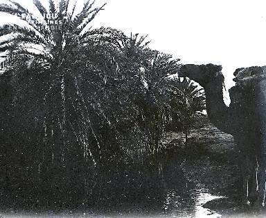 B069 L'oasis 1