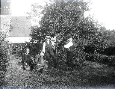 B073 La cueillette des pommes