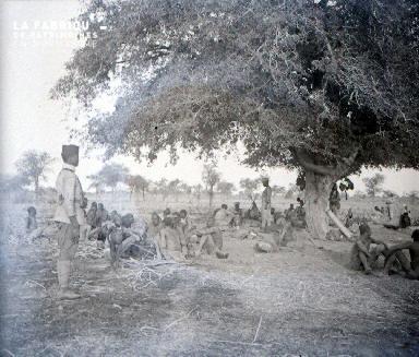 C005 Les esclaves