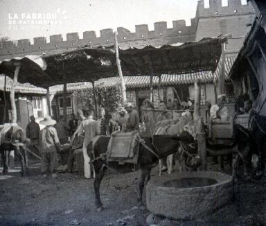 Un âne bâté au marché
