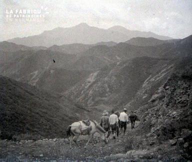 C011 Dans les montagnes
