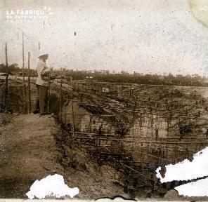 Les bambous sur la rivière