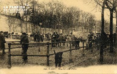 Caen, marché aux bêtes