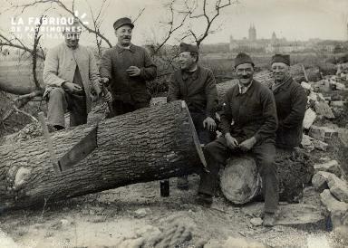 Coupe du bois