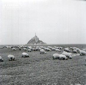 Le Mont Saint Michel E 10