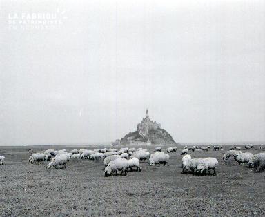 Le Mont Saint Michel E 2