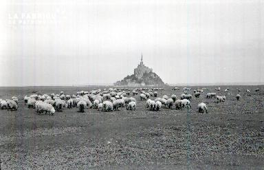 Le Mont Saint Michel E 5