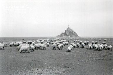 Le Mont Saint Michel E 6
