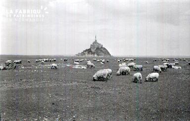 Le Mont Saint Michel E 7