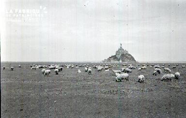 Le Mont Saint Michel E 9