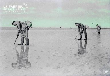 B007 Pêcheurs à pieds sur la baie