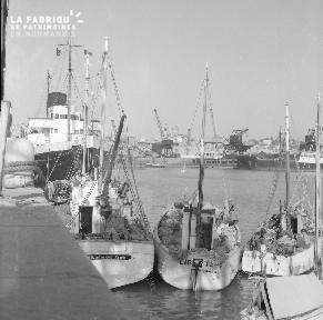 B007 Granville Navires à quai 2