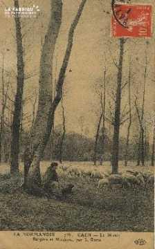 Cl 05 067 Caen le Musée - Bergère et Mouton par J. Rame
