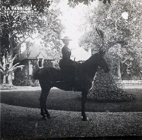 Femme à cheval dans le parc