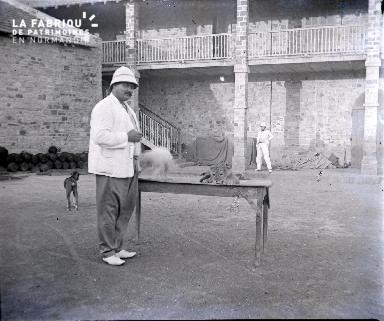 Afrique-Colons dans la cour d'une propriété avec un lionceau