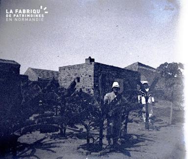 Afrique-Colons parmi de jeunes palmiers