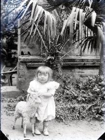 Enfant devant la serre