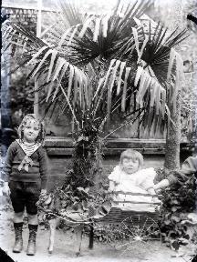 Enfants devant la serre