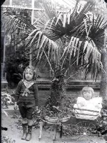 Enfants jouant dans la serre