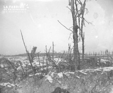 Marne-Arbus sur le bout du canal de l'Aisne près de Sapigneul, (informations complémentaires manquantes)