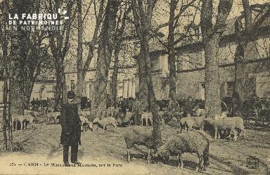 Cl 07 212 Caen - Le marché aux mouton, sur le parc