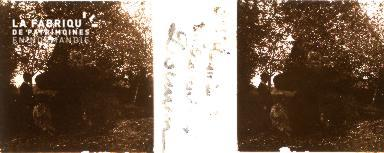 B005 Saint Germain de Tallevende Dolmen