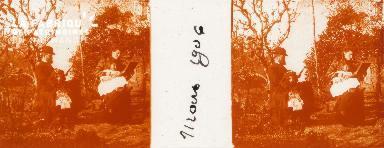B008 Famille 2 1906