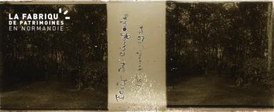 B008 forêt de cinglais 16 05 1924