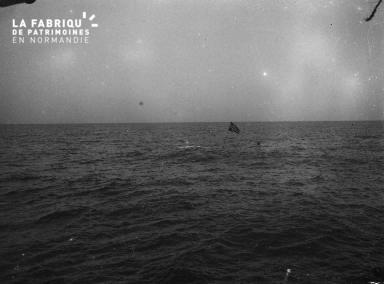 baleiniers 5