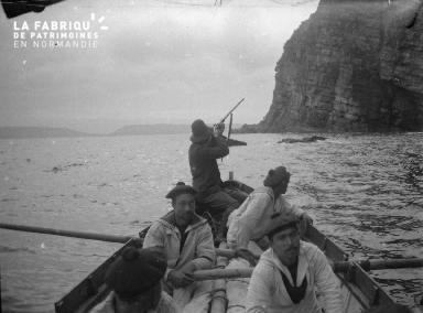 Shetlands Chasse aux oiseaux 5