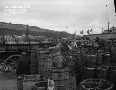 Shetlands Lerwick 5