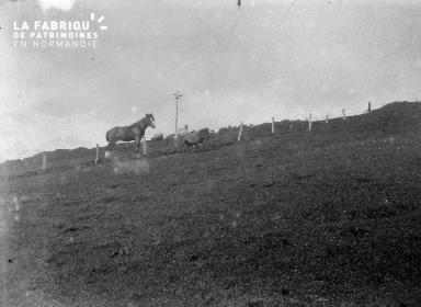 Shetlands Scolloway 5