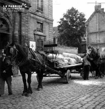 Un cheval attelé transportant des vivres