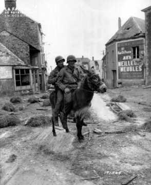 Deux soldats américains à dos d'âne