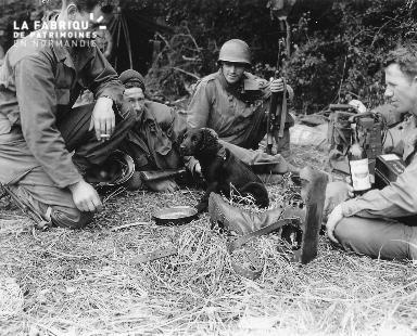 Soldats américains autour d'un chien Ranger