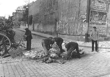 Des personnes affamées découpent le cadavre d'un cheval à Saint-Quentin.